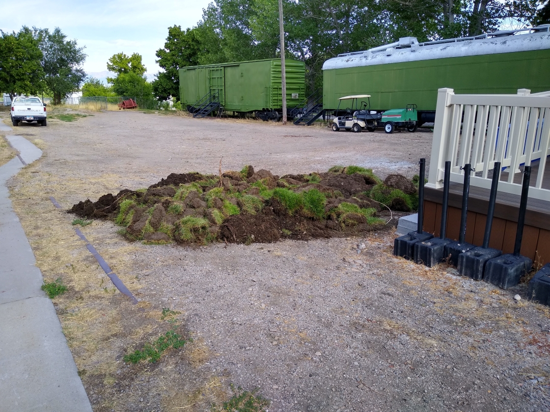 Pile of removed grass